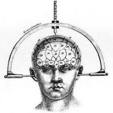 cropped-phrenology